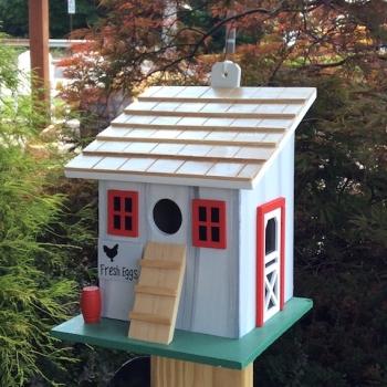 Chicken Coop HB-9099 SS