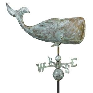 505V1A - 37%22 Whale - Blue Verde