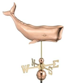 9660P - Whale