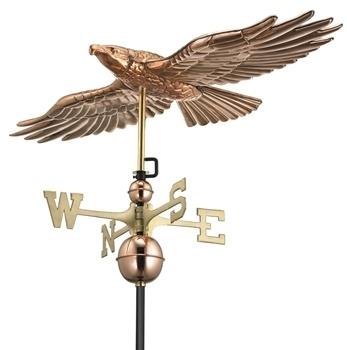 9699P - Hawk