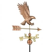 1969P American Bald Eagle