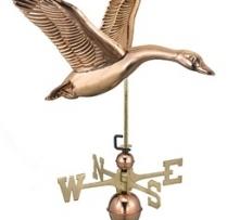 9663P - Goose