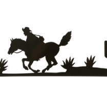 pony vane