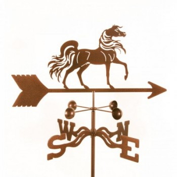 Arabian-Horse-WV