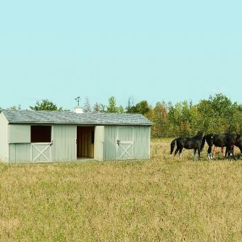 12' x 30' Horse Barn