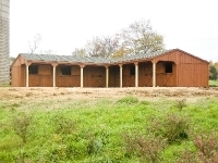 48x48 Horse Barn With 8' Hinged Lean To, Green Shingles, Rustic Cedar Stain, Drop Flap Window