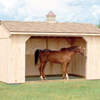 run_in_shed_2