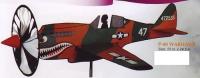 P-40 Warhawk Spinner