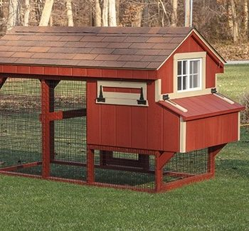 4x8ft-Chicken-Range-2-1-350x325